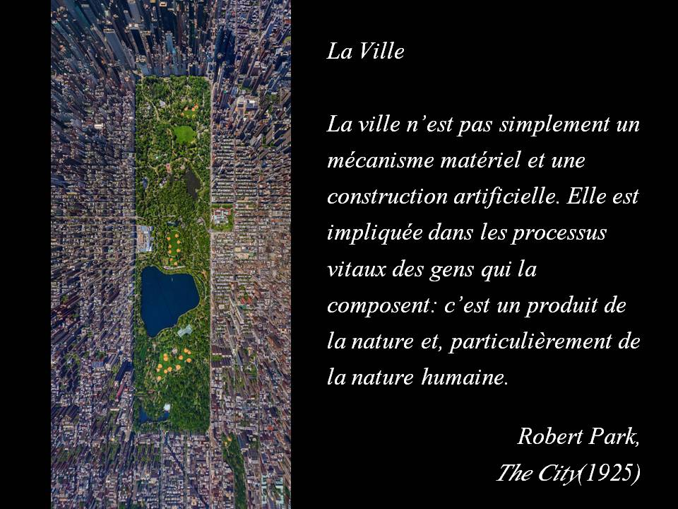 Citation de Robert Park